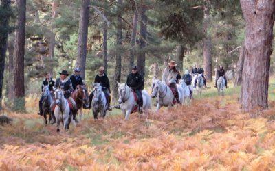 Fin de semana Octubre: Hoyos del Espino-San Esteban del Valle